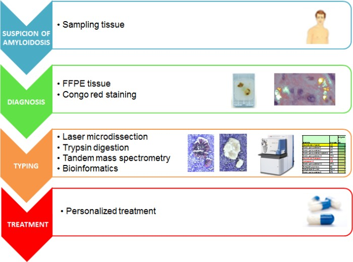 Workflow for mass-spectrometry-based proteomic classification of amyloidosis